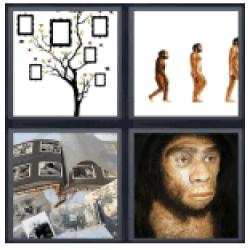 4-pics-1-word-ancestor