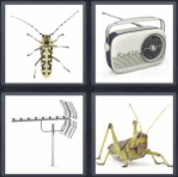 4-pics-1-word-antenna