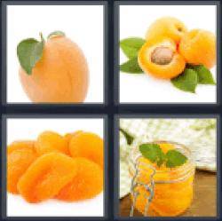 4-pics-1-word-apricot