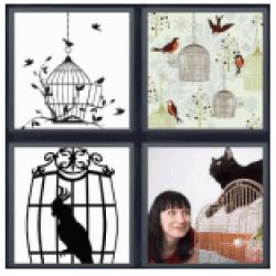 4-pics-1-word-birdcage