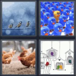 4-pics-1-word-birds