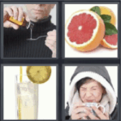 4 Pics 1 Word Grapefruit