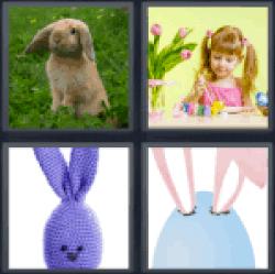 4-pics-1-word-bunny