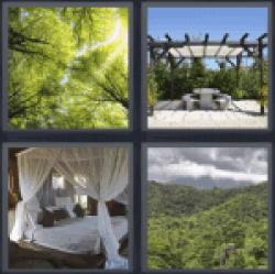 4-pics-1-word-canopy