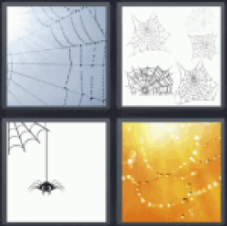 4-pics-1-word-cobweb