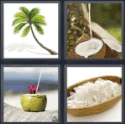 4-pics-1-word-coconut