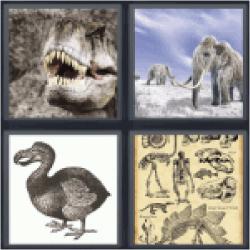 4-pics-1-word-extint