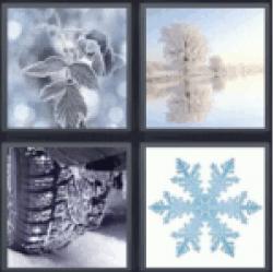 4 Pics 1 Word Snow on leaf