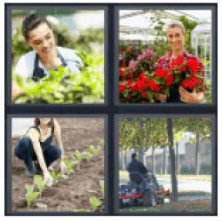 4-pics-1-word-gardener