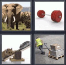 4 pics 1 word big elephant all answers 4 pics 1 word big elephant expocarfo Images