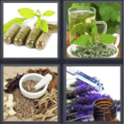 4-pics-1-word-herbal