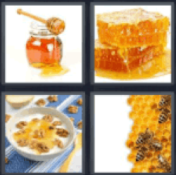 4-pics-1-word-honey