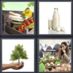4-pics-1-word-organic
