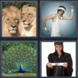 4-pics-1-word-pride
