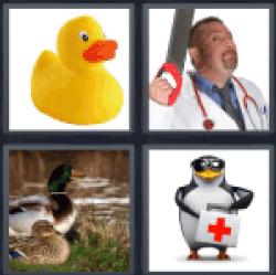 4-pics-1-word-quack