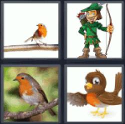 4-pics-1-word-robin