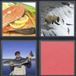 4-pics-1-word-salmon-2