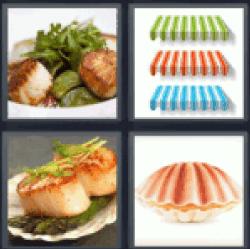 4-pics-1-word-scallop