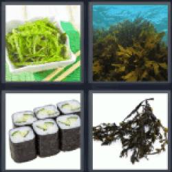 4-pics-1-word-seeweed