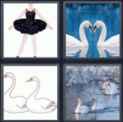 4-pics-1-word-swans