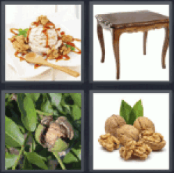 4-pics-1-word-walnut