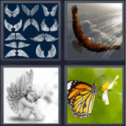 4-pics-1-word-wings