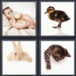 4-pics-1-word-baby