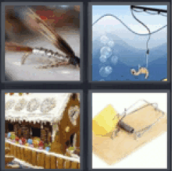 4 Pics 1 Word Insects