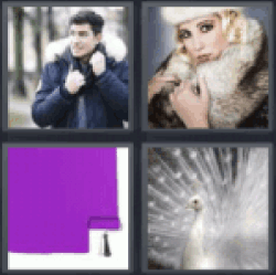 4 pics 1 word purple paint coat