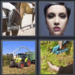 4-pics-1-word-crop