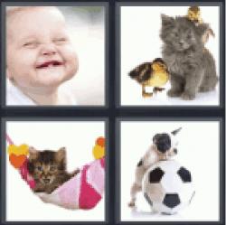 4-pics-1-word-cute