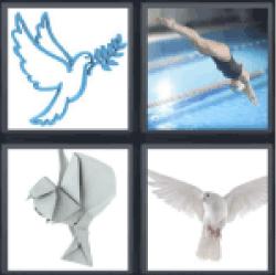 4-pics-1-word-dove