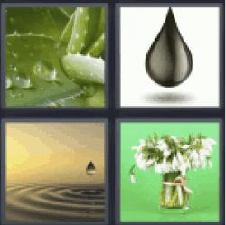 4-pics-1-word-drop