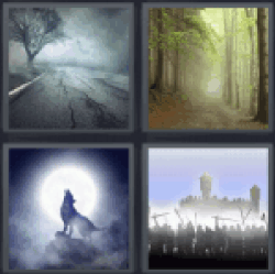 4 Pics 1 Word wolf howling