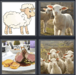 4 Pics 1 Word drawing of sheep
