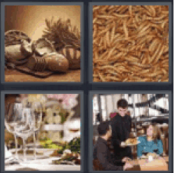 4 pics 1 word food wheat
