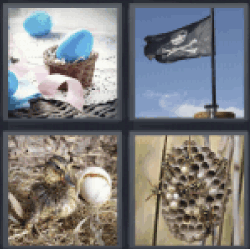 4 pics 1 word blue egg pirate flag