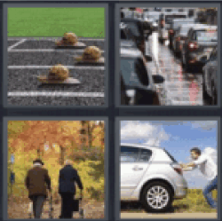 4 pics 1 word snails race. Traffic jam. Old couple with walkers. Man  pushing car.