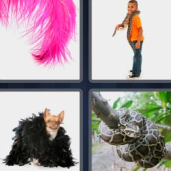 4 pics 1 word 3 letters snake, feather...