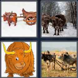4 pics 1 word 4 letters answers easy search updated answer oxen expocarfo