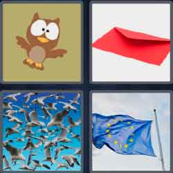 4 pics 1 word owl, red envelope, Many seagulls or birds flying