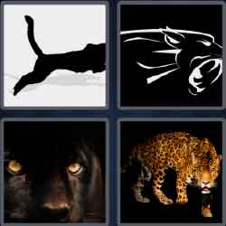 4 pics 1 word 7 letters answers easy search updated answer panther expocarfo