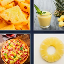 4 pics 1 word Hawaiian Pizza