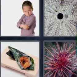 4 pics 1 word 6 letters answers easy search updated answer urchin expocarfo Gallery