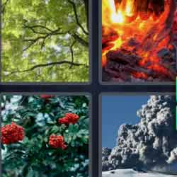 4 pics 1 word fire roses