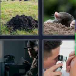 4 pics 1 word doctor spy