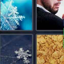 4 pics 1 word ice star