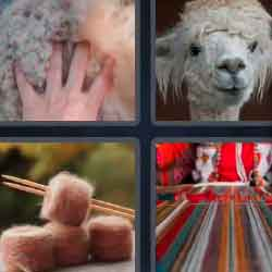 4 pics 1 word 6 letters answers easy search updated 4 pics 1 word 6 letters expocarfo Images