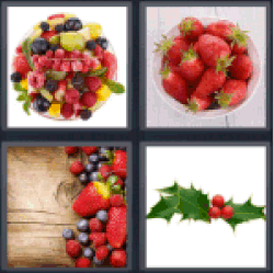 4-pics-1-word-berry