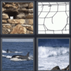 4 pics 1 word cheats 6 letters now better with 4 pics 1 word 4 pics 1 word rocks whale ocean expocarfo Gallery